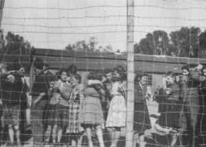 sop-resize-400-מעפילים במחנה המעצר בעתלית