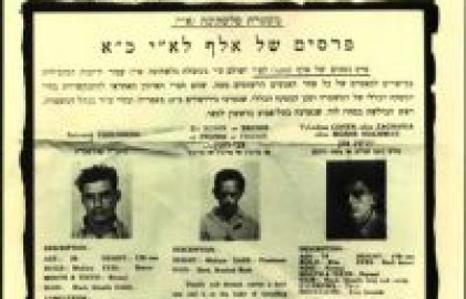 """מוכי שיגעון המלכות, לוחמי חירות במולדת בצל חיסולו של """"הארגון הצבאי הלאומי בישראל"""""""